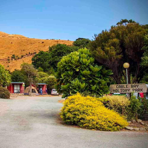 cable-bay-nelson-accomodation-campground-2