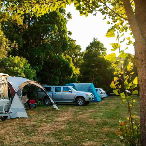 cable-bay-nelson-accomodation-campground-3